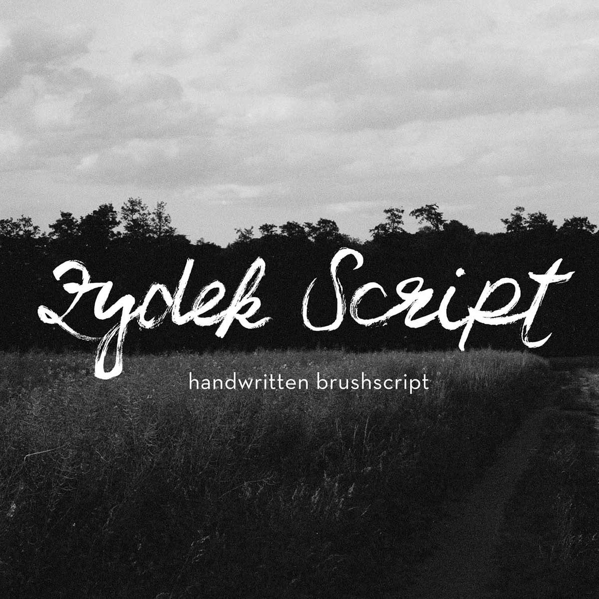 """Featured image for """"Zydek Script"""""""